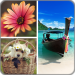Download Photo Collage Editor 2.0.32 APK For Android 2019