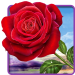 Download Rose. Magic Touch Flowers 2.3.2 APK For Android 2019