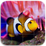 Download Marine Life Tile Puzzle 1.08 APK For Android