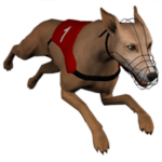 Download Dog Racing GHmanager 2.3.1 APK For Android