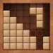 Download Block Puzzle Wood Star2020 1.0.8 APK For Android