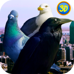 Download City Birds Simulator 1.1 APK For Android