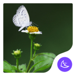 Download Mood-APUS Launcher theme 566.0.1001 APK For Android