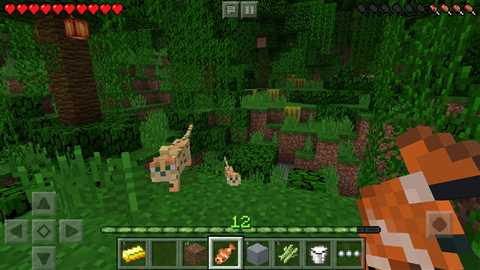 Minecraft: Pocket Edition 1