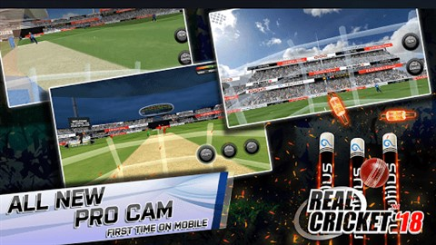 Real Cricket 18 image 3