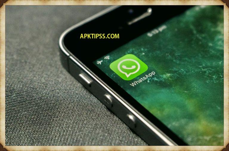 Whatsapp Profile Tracker