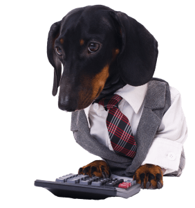Data Dacshund Veterinary Advisor