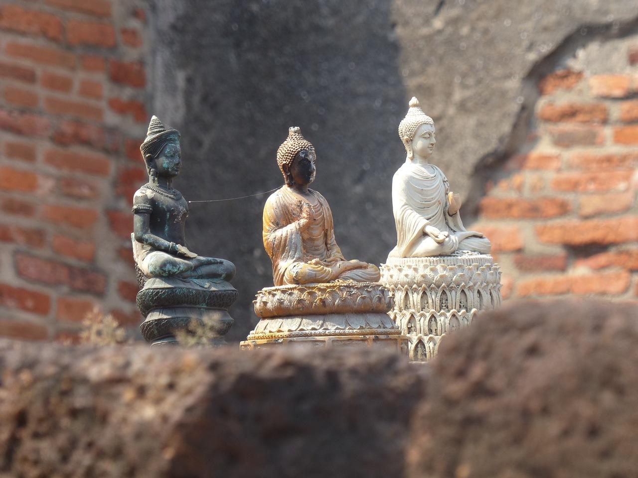 bouddhas-ayutthaya