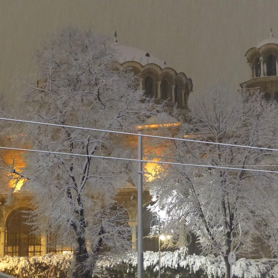 sofia-neige