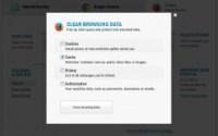 s auslogics browser care