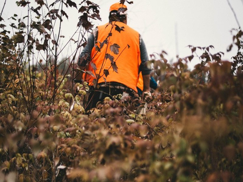 10 Tips for Hiking During Hunting Season