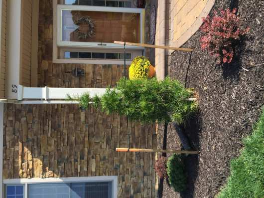 landscaping in lebanon pa