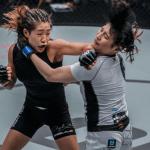 Angela Lee's Best Five Stoppage Wins