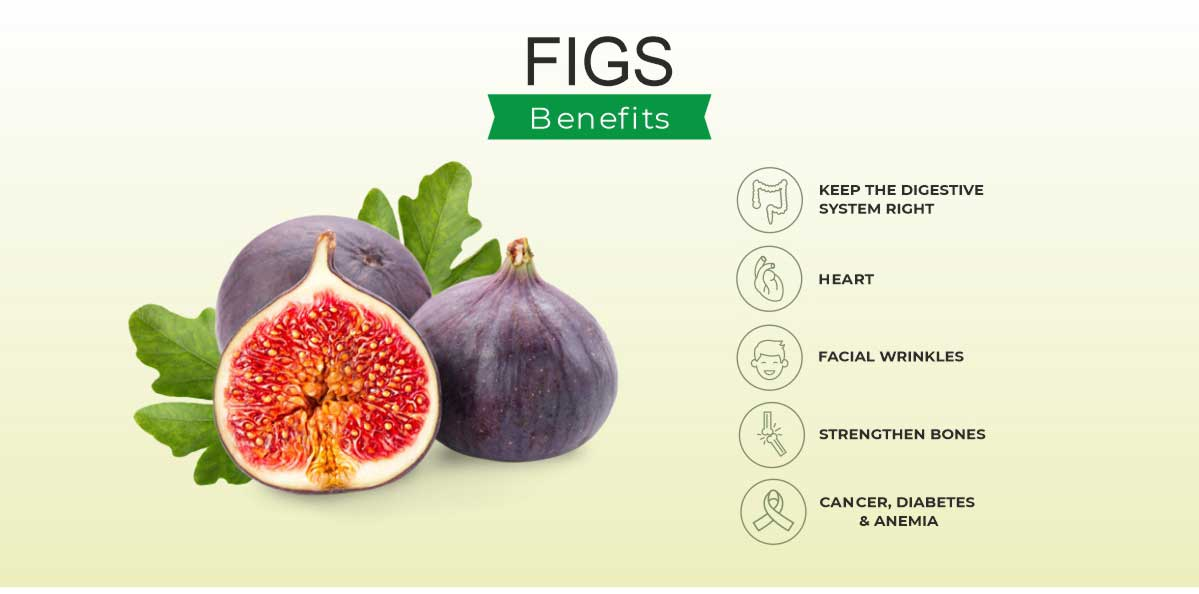 Figs Benefits and Side Effects India 2021