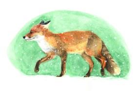 Entdecke dein Krafttier - Fuchs