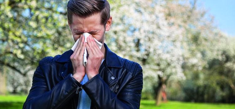Pollen Alarm - laufende Nase
