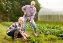 Freude an der Gartenarbeit statt Rückenschmerzen