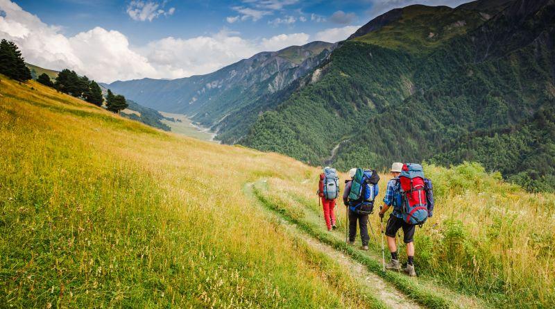 Wandern. 3 Personen wandern über Waldweg in Bergen