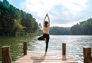 Wechseljahre: So bleiben Körper, Geist und Hormone  im Gleichgewicht