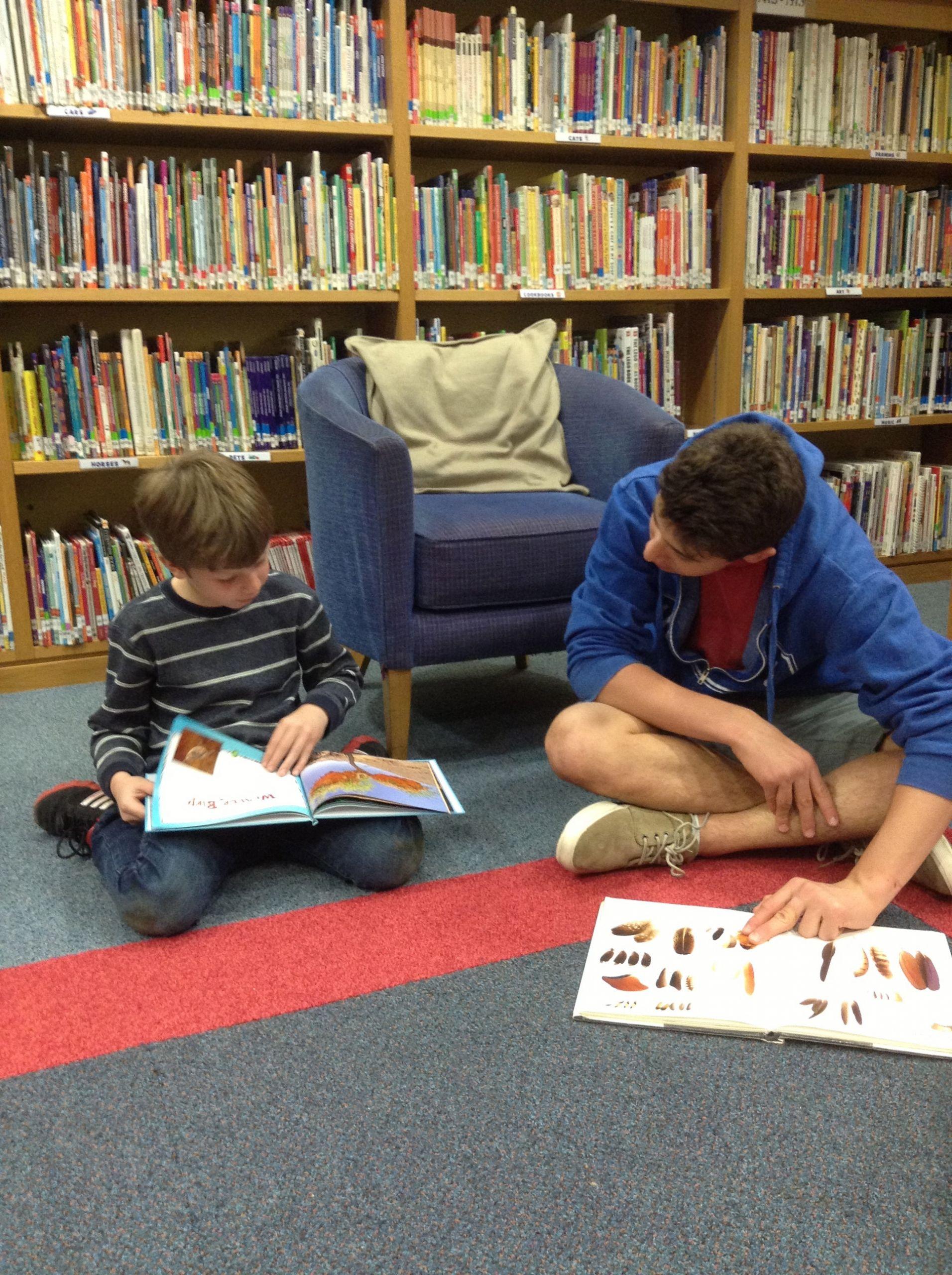 3 Award Winning Literature Kids Newbery Shortlist