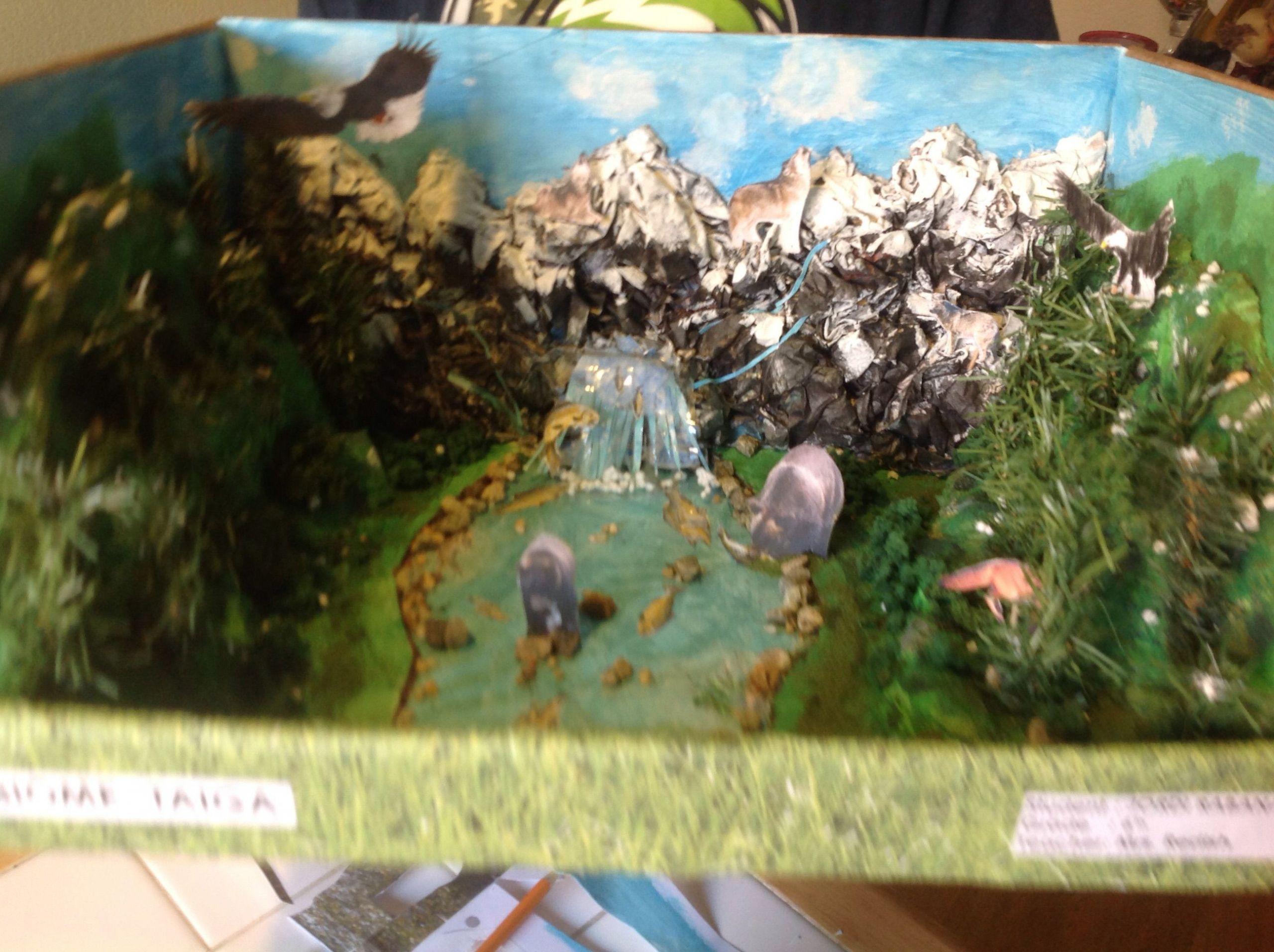6 Animals Worksheets Forest
