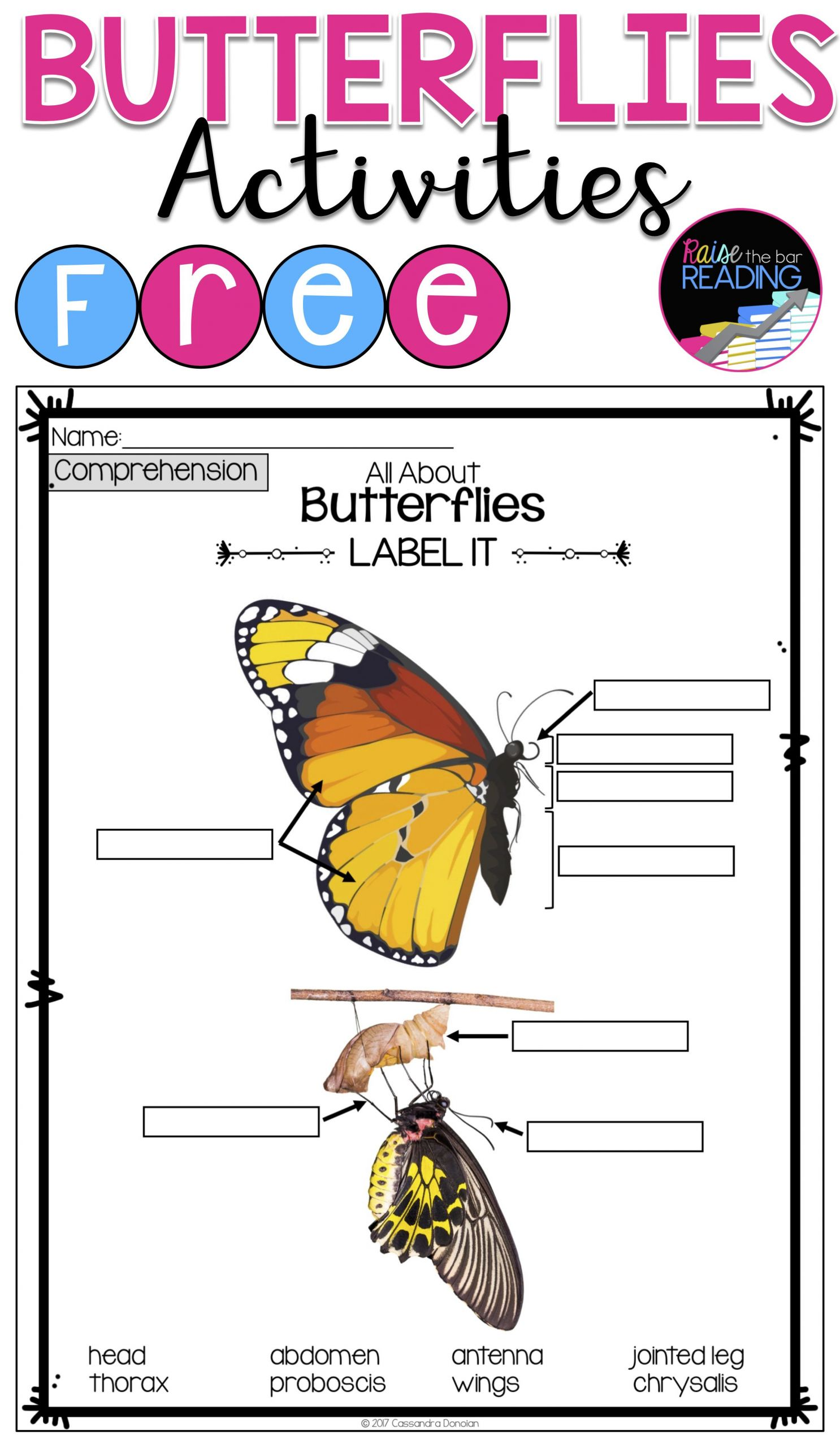 6 Animals Worksheets Life Science