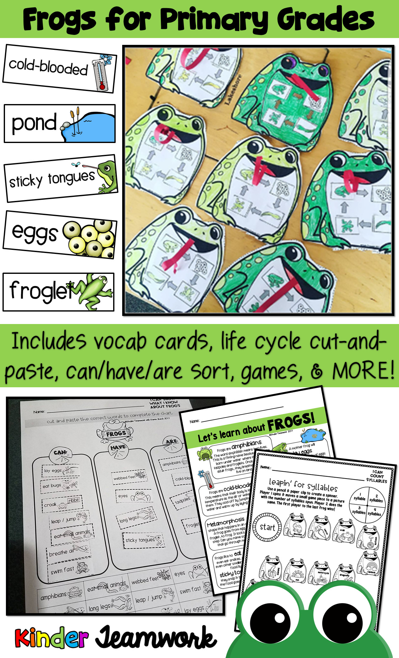 6 Animals Worksheets Primary