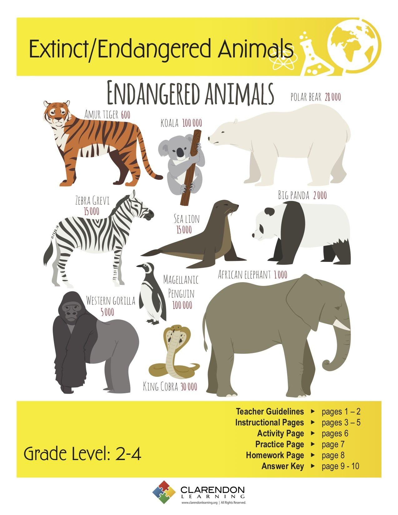 7 Animals Worksheets Student