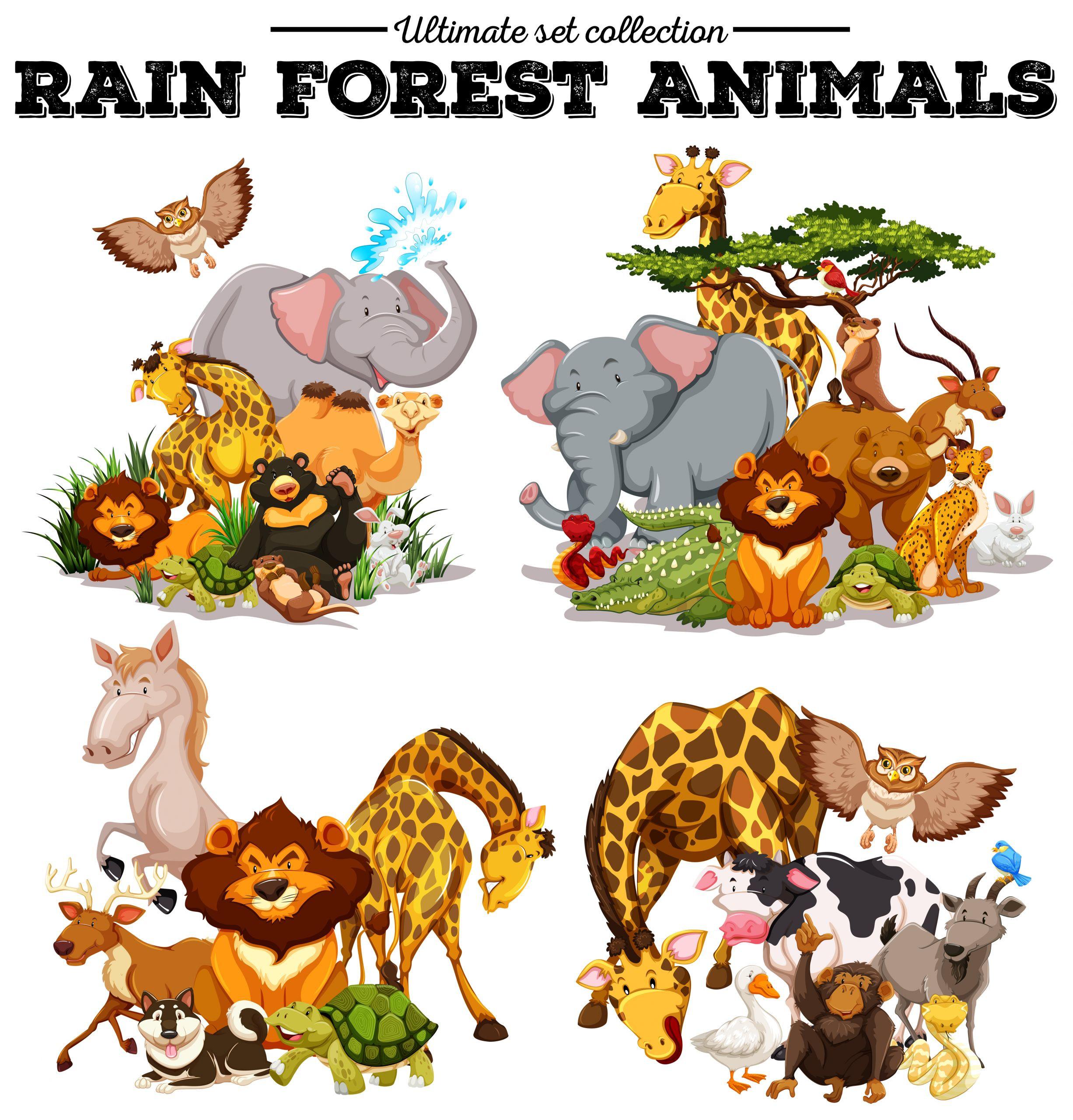 7 Forest Animals Preschool Worksheets