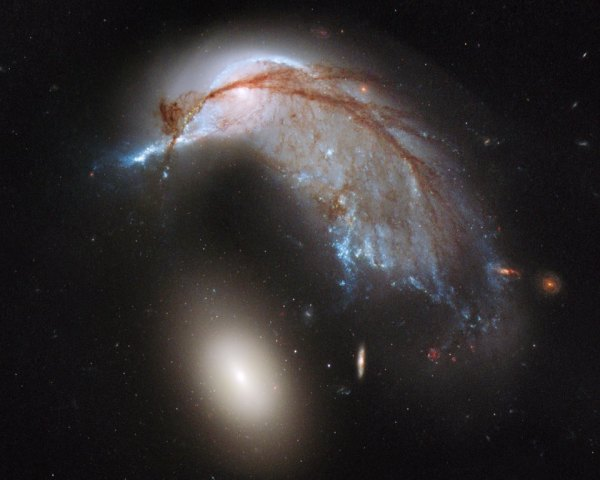 APOD: 2013 June 24 - The Porpoise Galaxy from Hubble