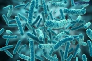 Αποφύγετε τα μικρόβια με απολυμάνσεις