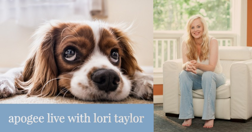 Apogee Live - Lori Taylor, Trudog