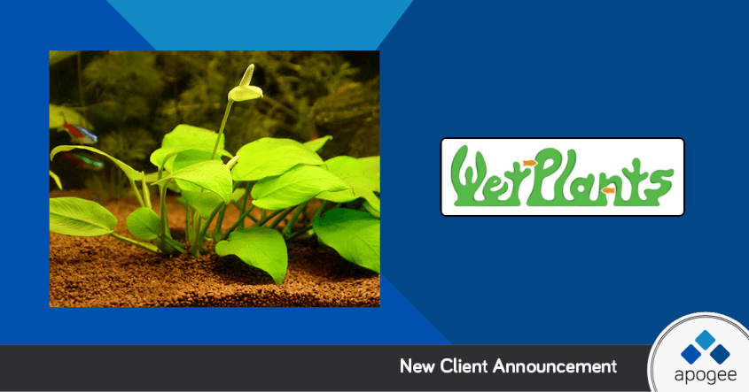Wet Plants   Affiliate Program Managed by Apogee