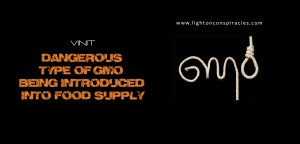 Dangerous Type of GMO Being Introduced Into Food Supply   Light On Conspiracies – Revealing the Agenda