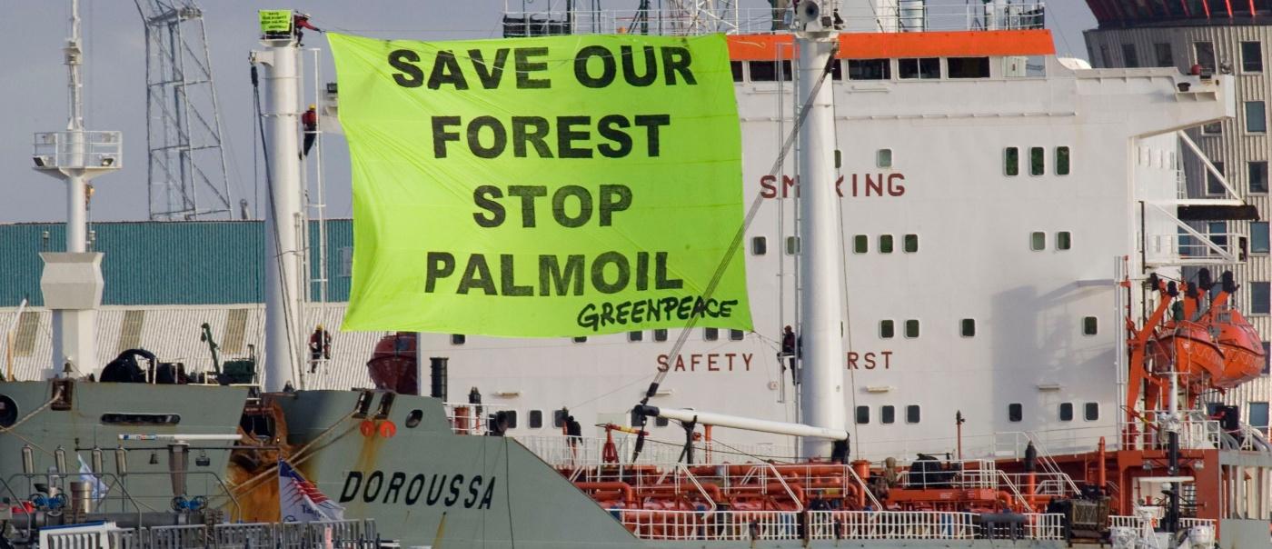 Hoe palmolie die in Rotterdam 'duurzaam' heet in Azië voor klimaat- en mensenrechtenschendingen zorgt