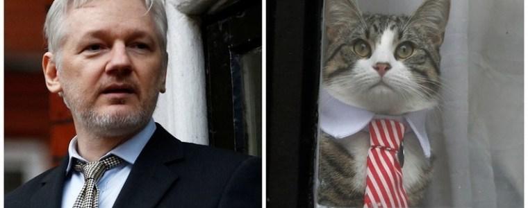 Neue Regeln für Assange: Keine politischen Aussagen, eigene Rechnungen bezahlen, Kater selbst hüten