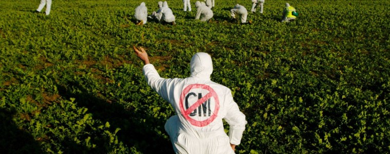 From GM Potatoes to Glyphosate: Regulatory Delinquency & a Toxic Post-Brexit Trade Deal
