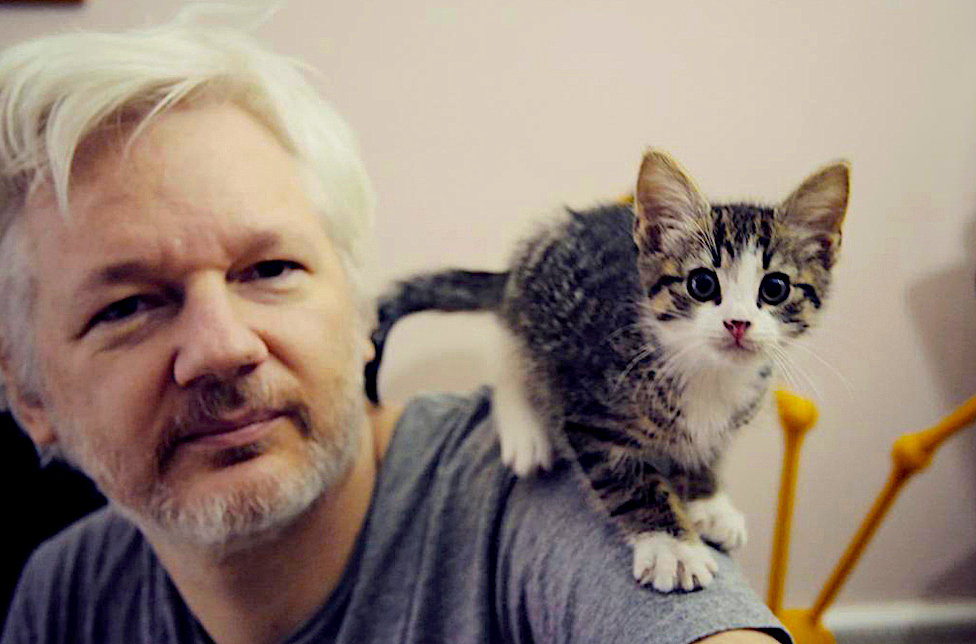 the-west-is-failing-julian-assange