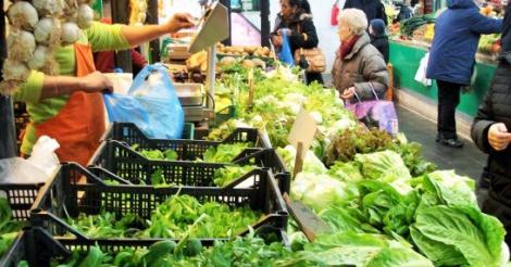 italie-is-koploper-in-biolandbouw-maar-vindt-geen-jonge-boeren