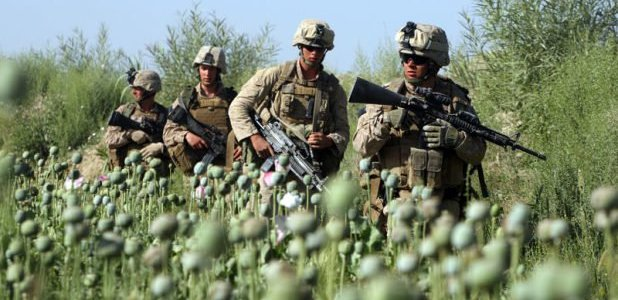 war-is-good-for-business-and-organized-crime-afghanistan8217s-multibillion-dollar-opium-trade.-rising-heroin-addiction-in-the-us-8211-global-research