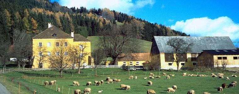kann-der-oko-landbau-europa-ernahren