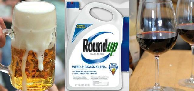 monsanto8217s-roundup-weed-killer-found-in-top-beer-and-wind-brands