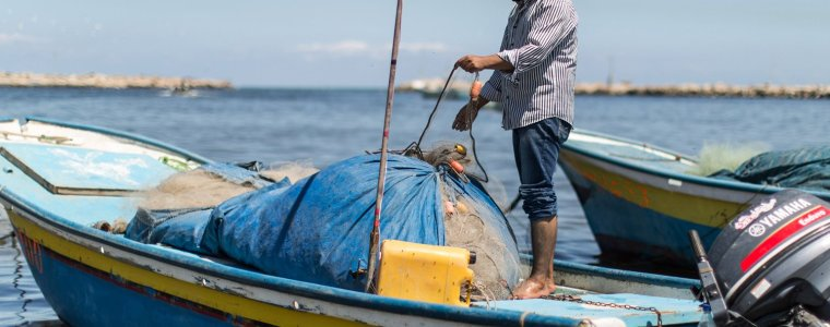 plenty-of-fish-in-gaza-sea,-but-not-for-palestinians-–-global-research
