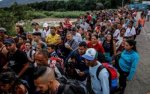 the-venezuelan-disinformation-campaign