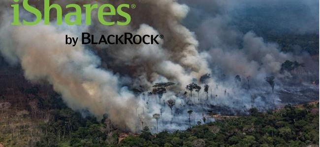 """amazon-chaos:-""""blackrock-is-literally-reaping-profits-as-the-world's-jungles-burn"""""""