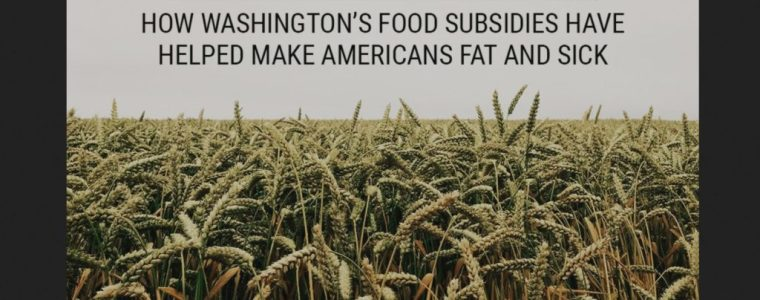 food-is-freedom:-how-washington's-food-subsidies-have-helped-make-americans-fat-and-sick