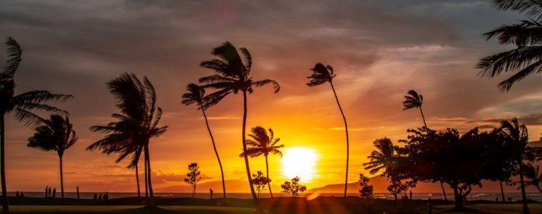 maui-wowie!-no-5g-drone-over-hawaii!!!