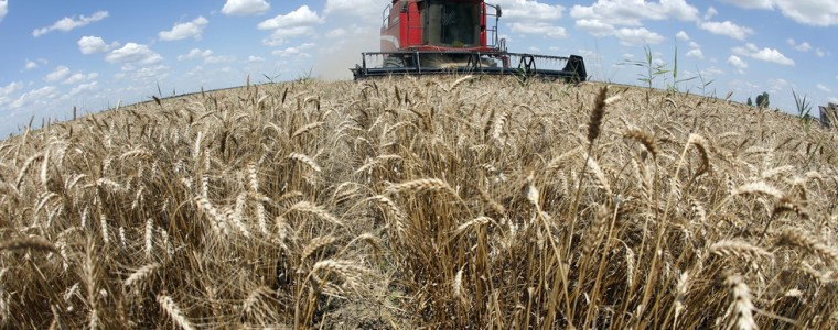 syria-to-get-5,000-tons-of-grain-from-russia's-crimea
