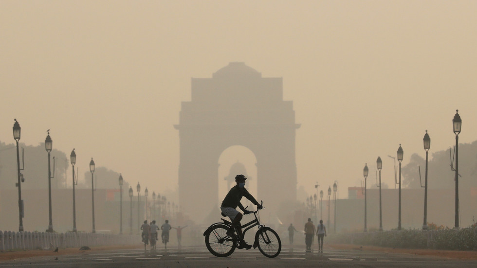 'better-kill-them-with-explosives!'-india's-supreme-court-says-air-pollution-turned-new-delhi-into-a-'gas-chamber'