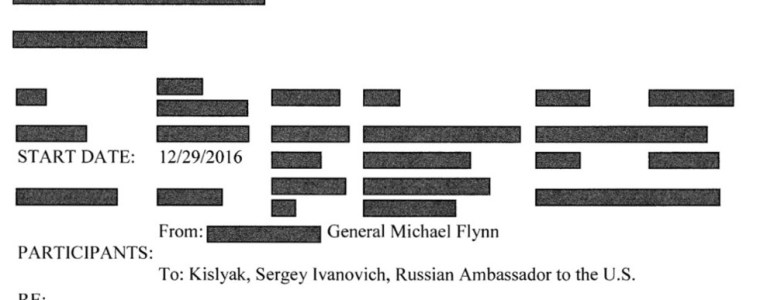 explosive-transcripts-show-flynn-wanted-to-work-with-russia-against-isis,-kislyak-warned-trump-'russiagate'-was-targeting-him